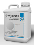 Phylgreen