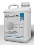 phylgreen B-Mo